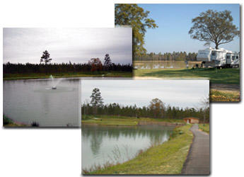 Lake Early RV Park, 5085 Topton Rd. McIntosh, AL 36553